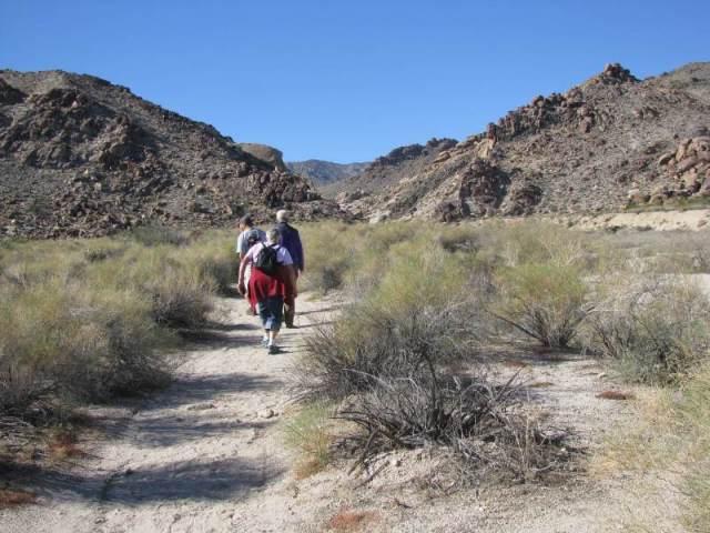 Wifey, sweet-marie, Rumrunner1on the trail