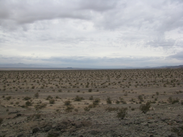 The view from Bristol Dry Lake Overlook