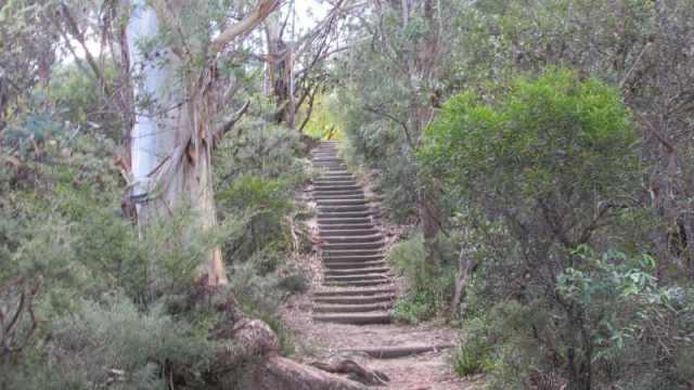 noooo not more stairs....